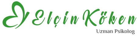 Elçin Köken Retina Logo